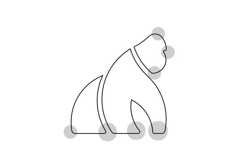 gorilla associazione correzioni ottiche