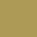 palette colore oro